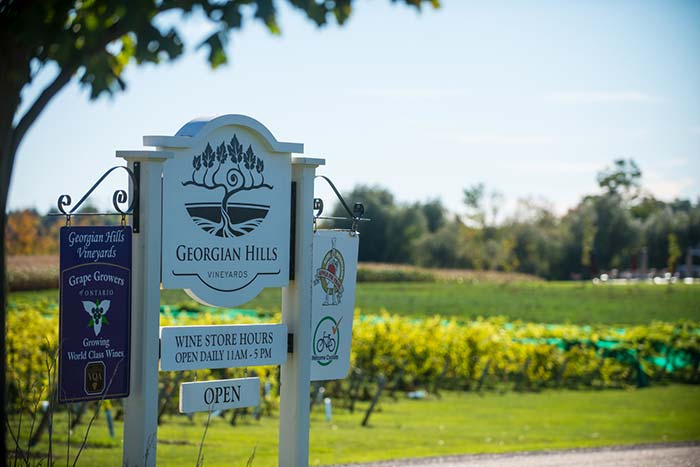 GeorgianHills Vineyards Wines and Ciders