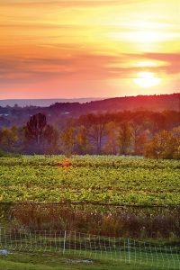 Coffin Ridge Sunset